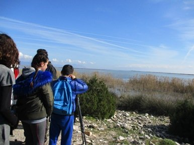 Wetlands education in the Messolonghi lagoon for WWD2017 succesfully completed
