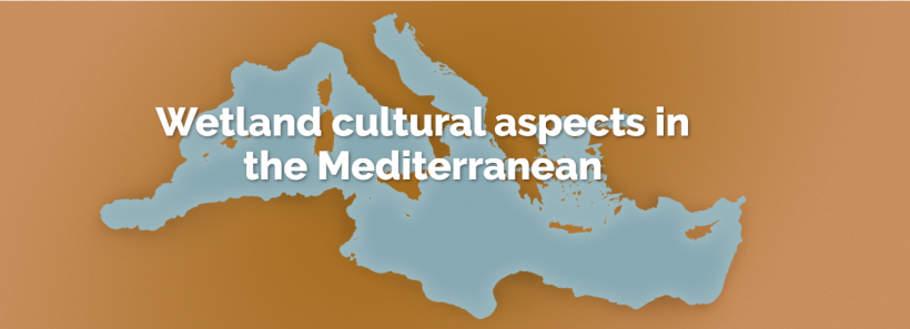 Launching of the MedWet Culture Network website
