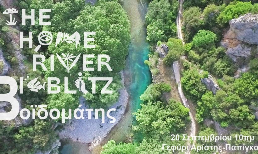 MedINA supports the Home River Bioblitz
